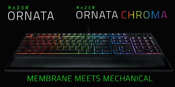 Razer Ornata