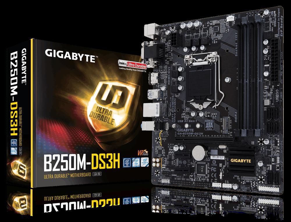 Gigabyte GA-B250M-DS3H