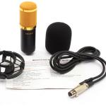 microfono bm800 prin gizcomputer